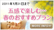 Bnr_spring_plan_2